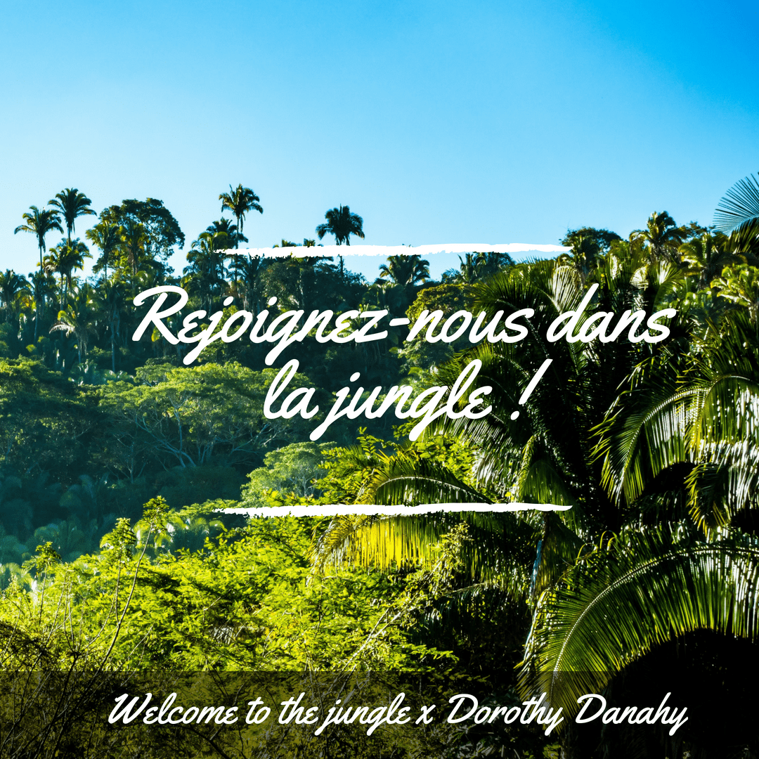 DOROTHY DANAHY X WELCOME TO THE JUNGLE